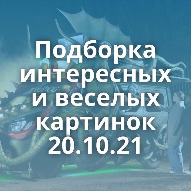 Подборка интересных и веселых картинок 20.10.21