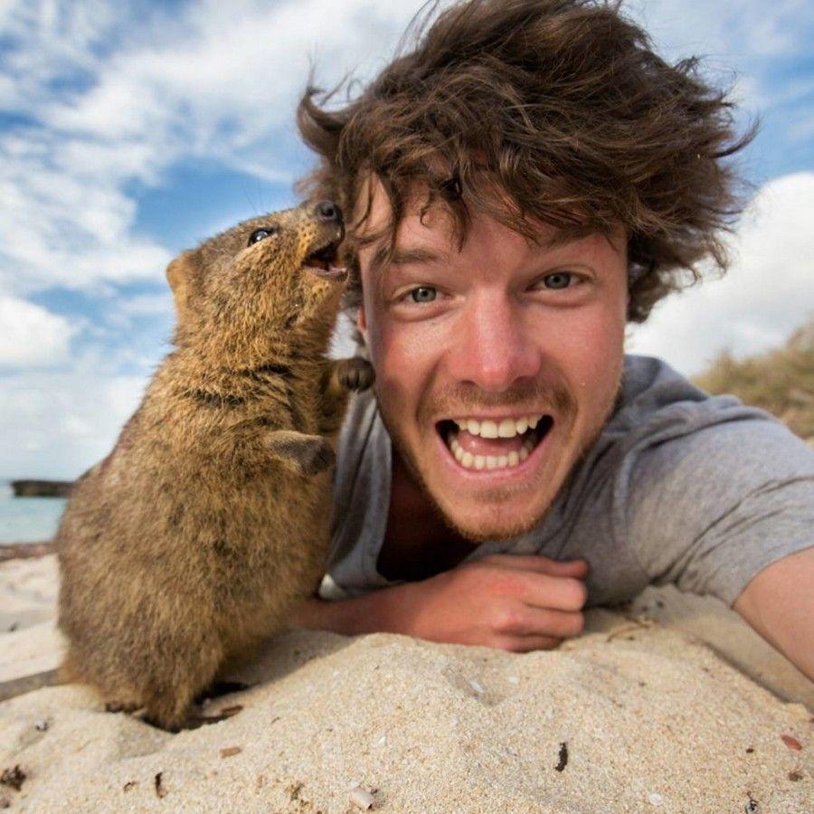 фотографии совмещение животных и людей