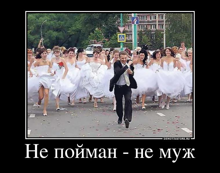 демотиваторы со свадеб живого нет кожа