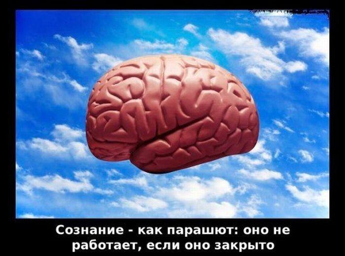 Мудрые цитаты в картинках мозги отвечают за мысли