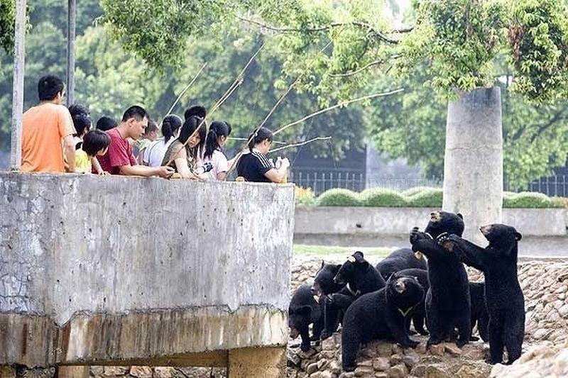 ржачные картинки в китае владивосток секс