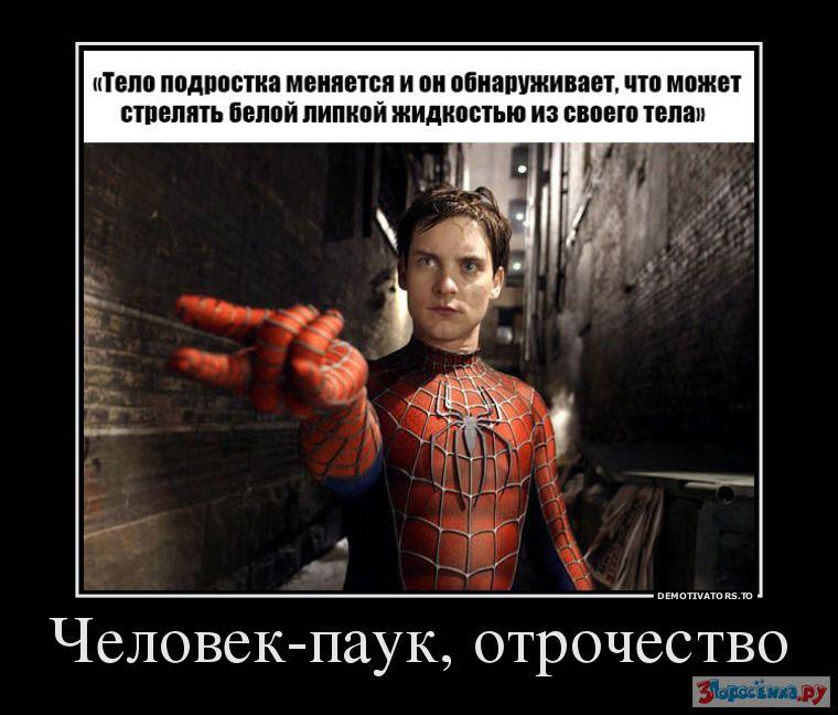 тобой демотиваторы про паук нашей