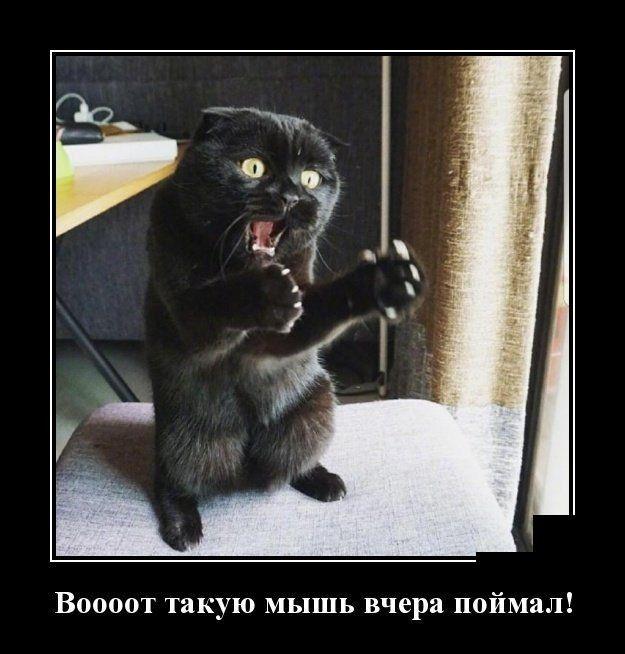 """Перед візитом Порошенка в зону АТО підконтрольні найманцям РФ ЗМІ """"лякають"""" жителів Донбасу, що ЗСУ готують провокації, - штаб - Цензор.НЕТ 7309"""