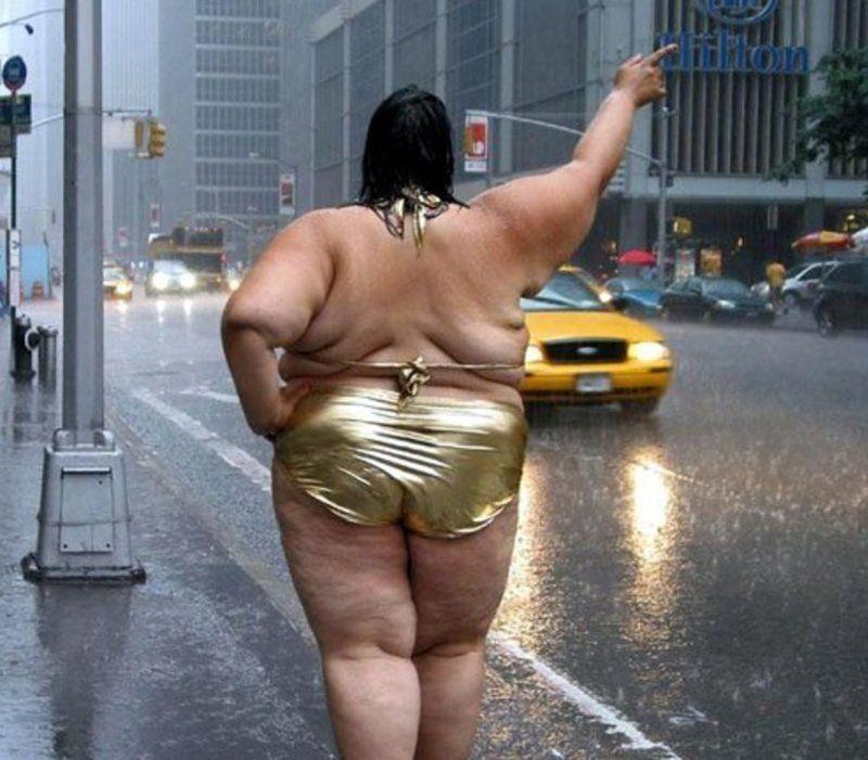 ржачные картинки про толстых то