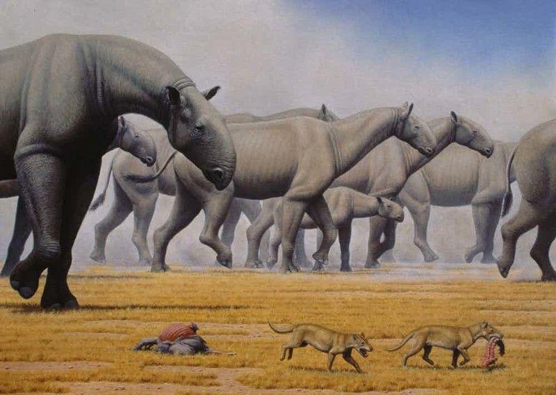самое большое животноекотрое когда либо анаселяло нашу плануту Два