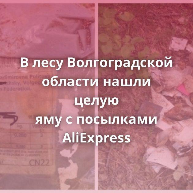 Влесу Волгоградской области нашли целую ямуспосылками AliExpress
