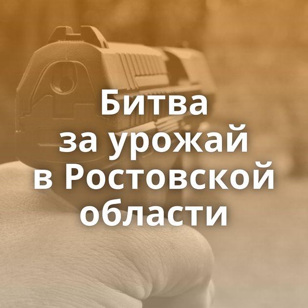 Битва заурожай вРостовской области