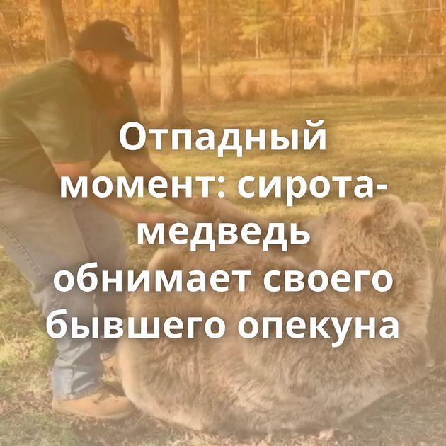 Отпадный момент: сирота-медведь обнимает своего бывшего опекуна