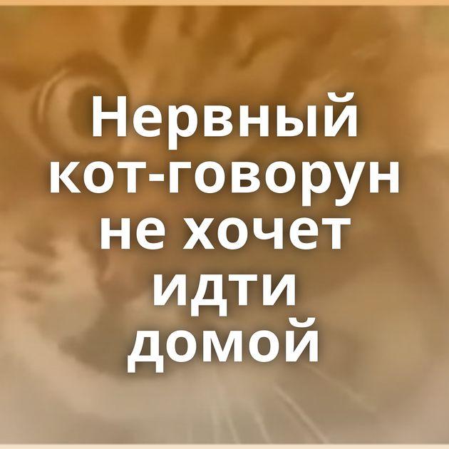 Нервный кот-говорун нехочет идти домой