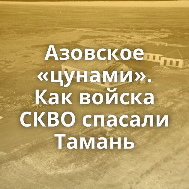 Азовское «цунами». Каквойска СКВО спасали Тамань
