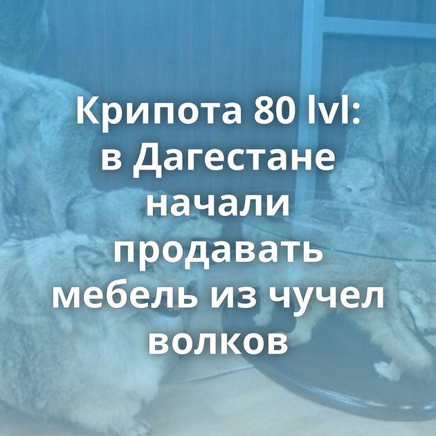 Крипота 80lvl: вДагестане начали продавать мебель изчучел волков