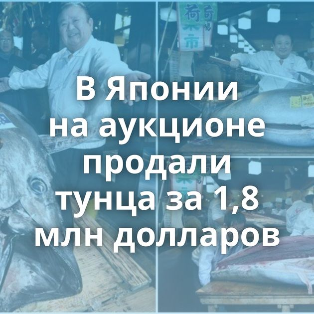 ВЯпонии нааукционе продали тунца за1,8 млндолларов