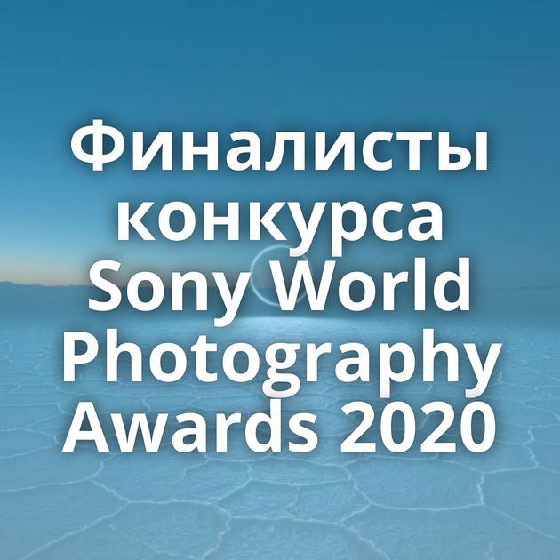 Финалисты конкурса Sony World Photography Awards 2020