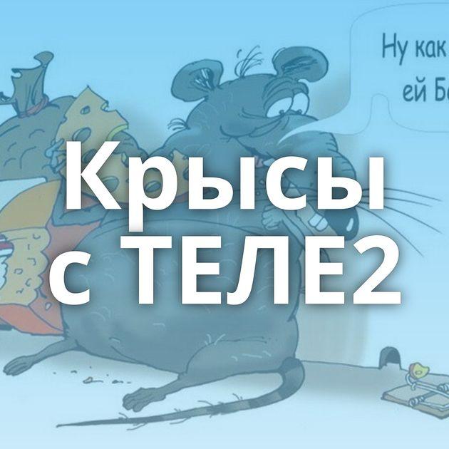 Крысы сТЕЛЕ2
