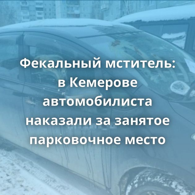 Фекальный мститель: вКемерове автомобилиста наказали зазанятое парковочное место