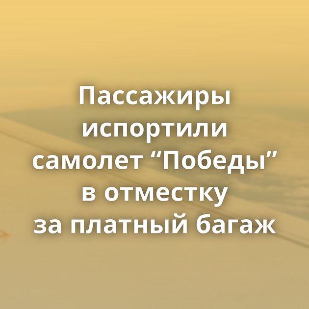 """Пассажиры испортили самолет """"Победы"""" вотместку заплатный багаж"""