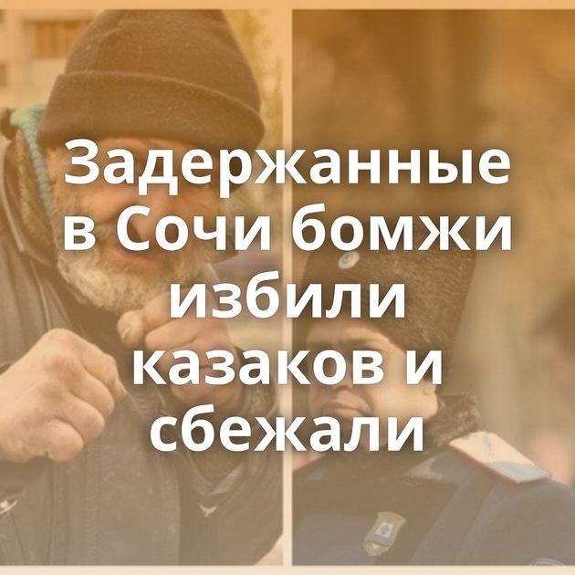 Задержанные в Сочи бомжи избили казаков и сбежали