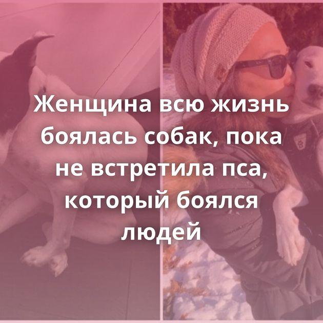 Женщина всю жизнь боялась собак, пока не встретила пса, который боялся людей