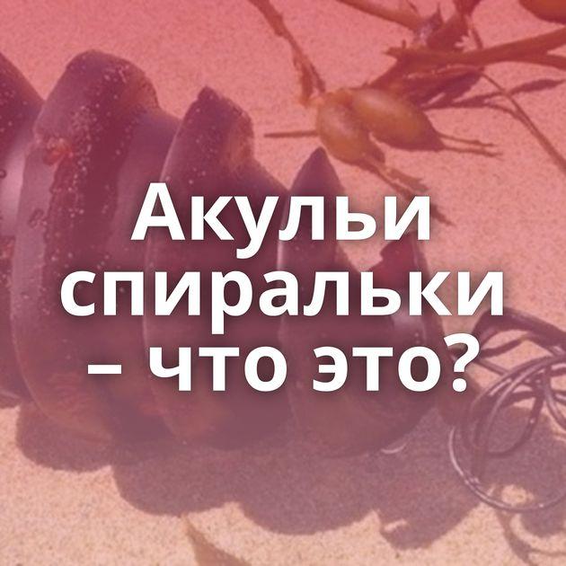 Акульи спиральки – что это?