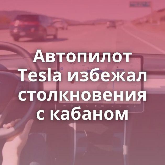 Автопилот Tesla избежал столкновения скабаном