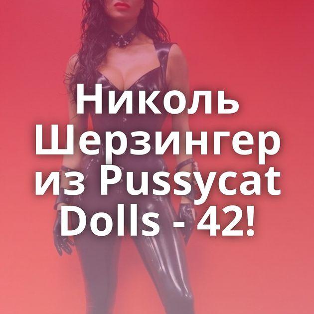 Николь Шерзингер из Pussycat Dolls - 42!
