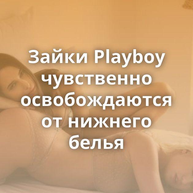 Зайки Playboy чувственно освобождаются от нижнего белья