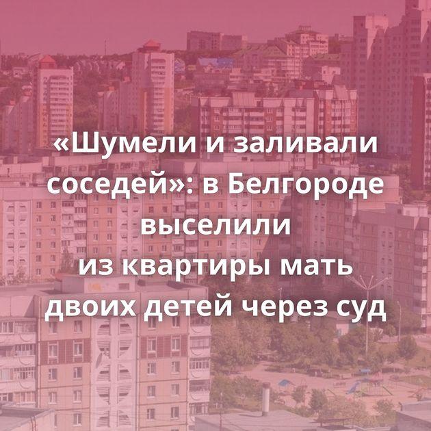 «Шумели изаливали соседей»: вБелгороде выселили изквартиры мать двоих детей через суд