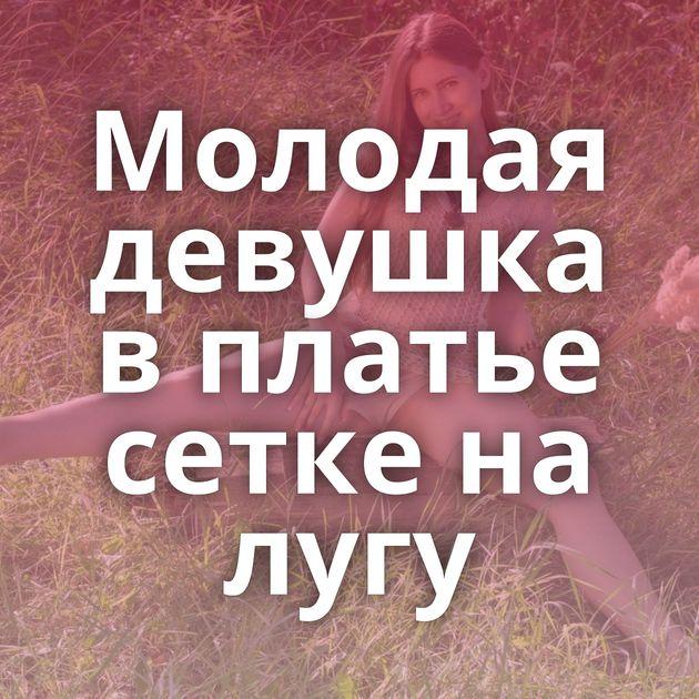 Молодая девушка в платье сетке на лугу
