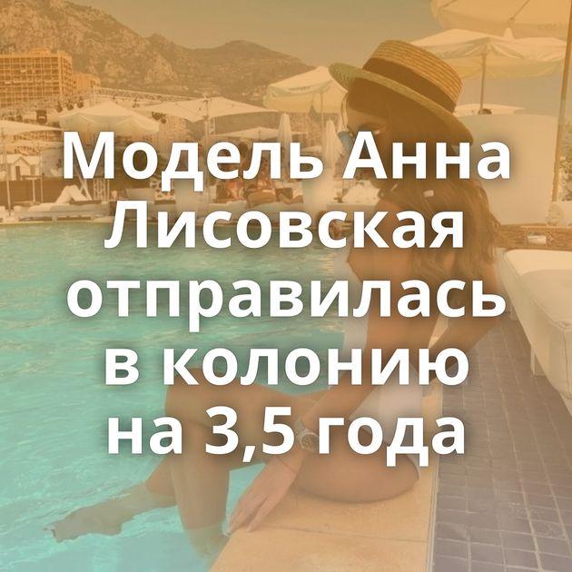 Модель Анна Лисовская отправилась в колонию на 3,5 года