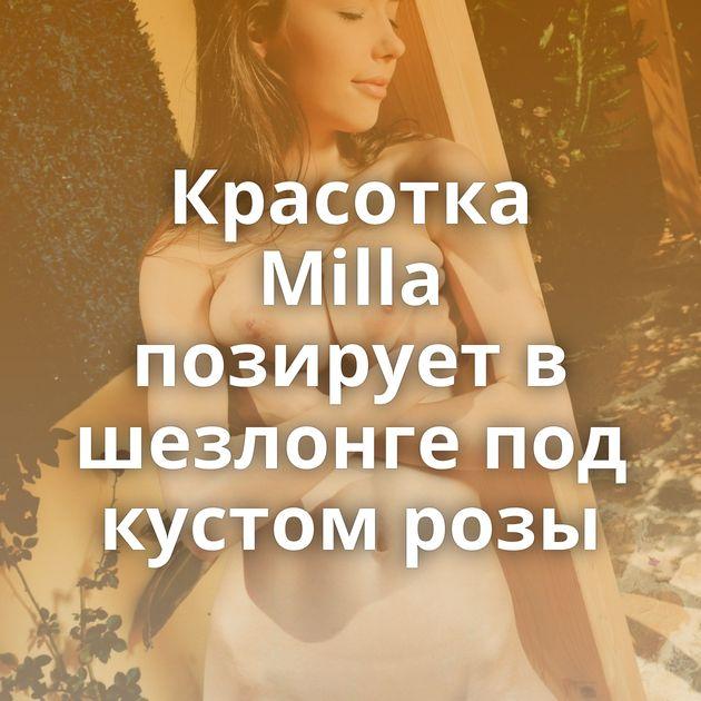 Красотка Milla позирует в шезлонге под кустом розы