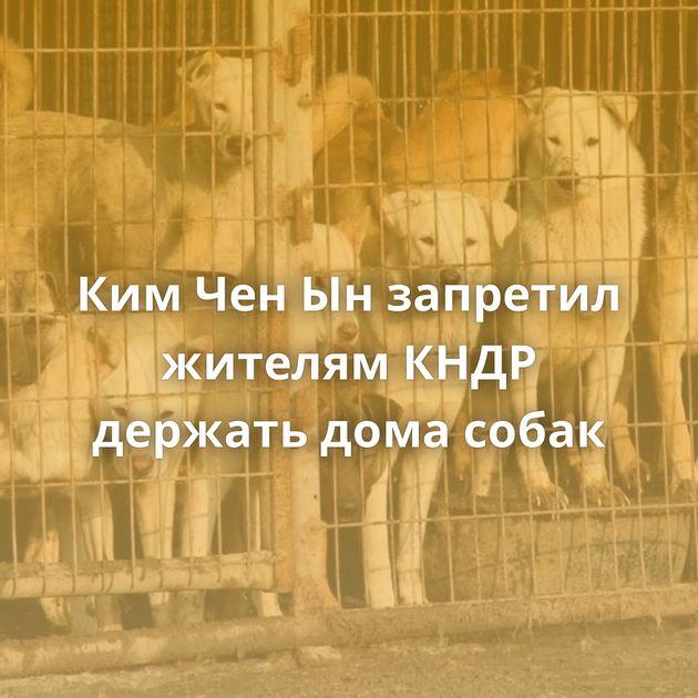 КимЧенЫнзапретил жителям КНДР держать дома собак
