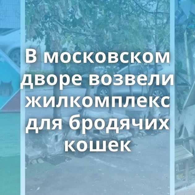 Вмосковском дворе возвели жилкомплекс длябродячих кошек