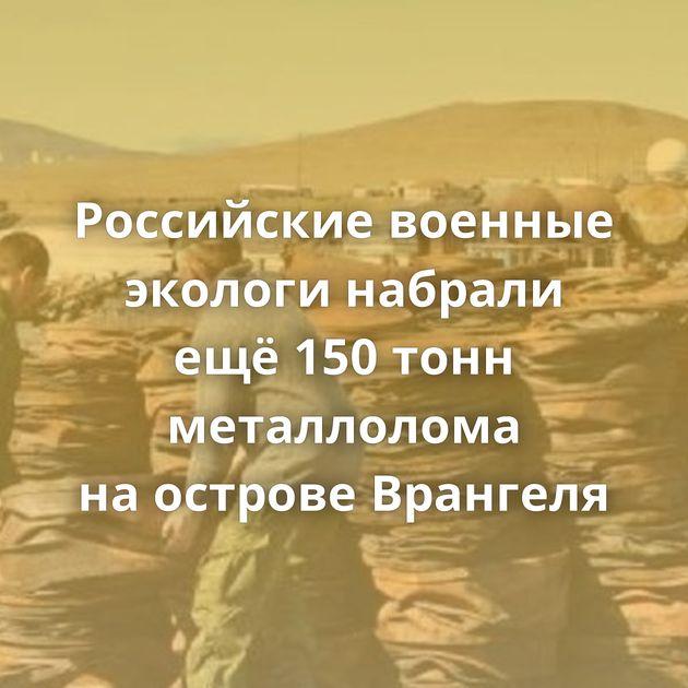 Российские военные экологи набрали ещё150тонн металлолома наострове Врангеля