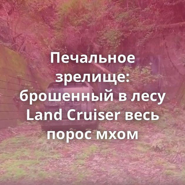 Печальное зрелище: брошенный влесу Land Cruiser весь порос мхом
