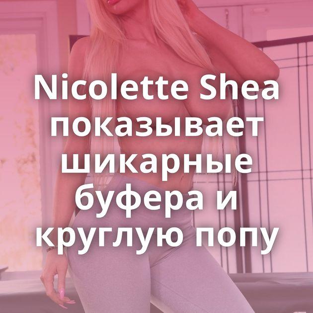 Nicolette Shea показывает шикарные буфера и круглую попу