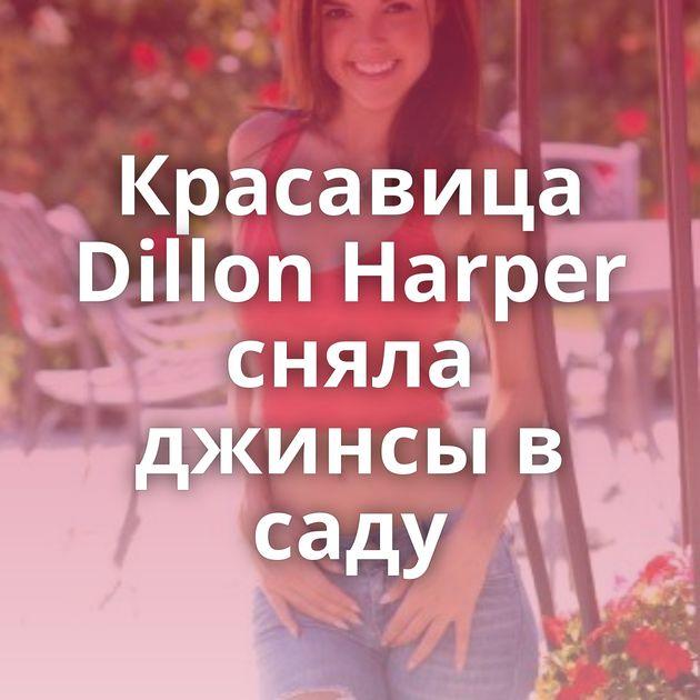 Красавица Dillon Harper сняла джинсы в саду