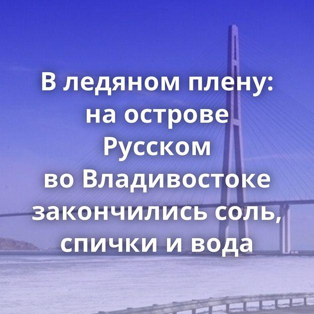 Вледяном плену: наострове Русском воВладивостоке закончились соль, спички ивода