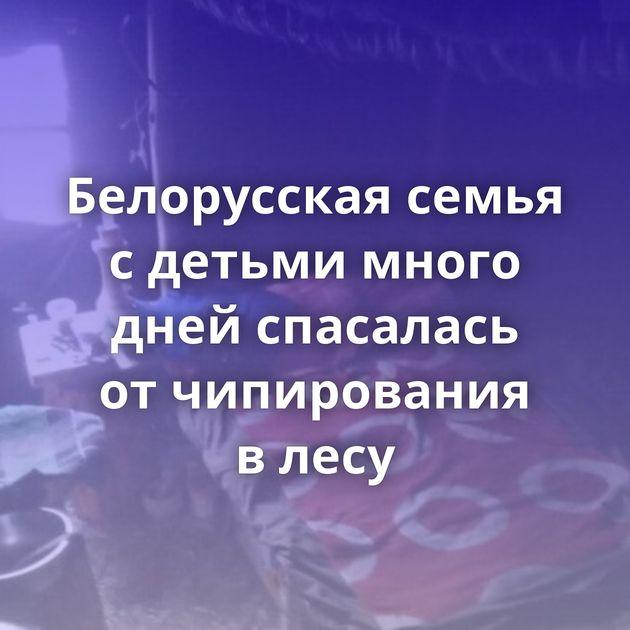 Белорусская семья сдетьми много дней спасалась отчипирования влесу