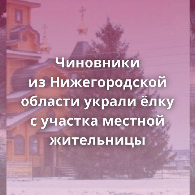 Чиновники изНижегородской области украли ёлку сучастка местной жительницы