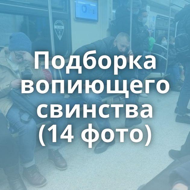 Подборка вопиющего свинства (14 фото)