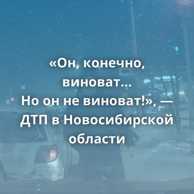 «Он, конечно, виноват… Ноонневиноват!», — ДТПвНовосибирской области