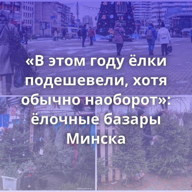 «В этом году ёлки подешевели, хотя обычно наоборот»: ёлочные базары Минска