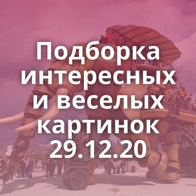 Подборка интересных и веселых картинок 29.12.20