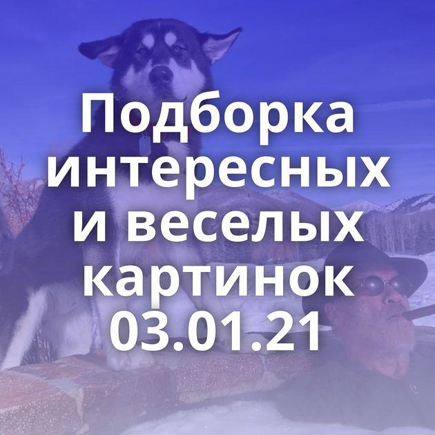 Подборка интересных и веселых картинок 03.01.21