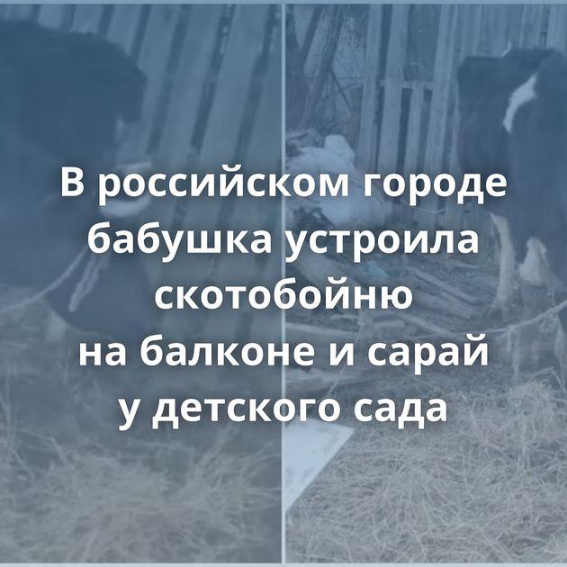 Вроссийском городе бабушка устроила скотобойню набалконе исарай удетского сада