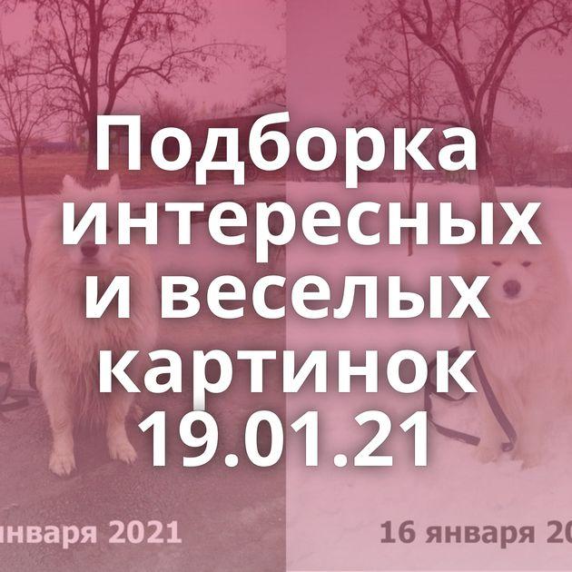 Подборка интересных и веселых картинок 19.01.21