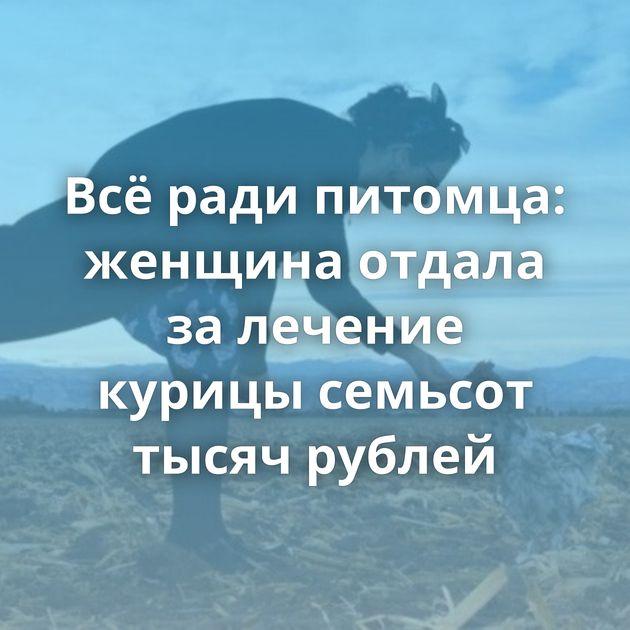 Всёради питомца: женщина отдала залечение курицы семьсот тысяч рублей