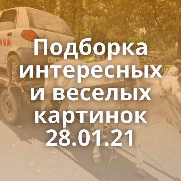 Подборка интересных и веселых картинок 28.01.21