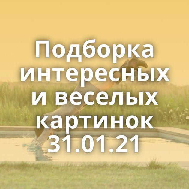 Подборка интересных и веселых картинок 31.01.21