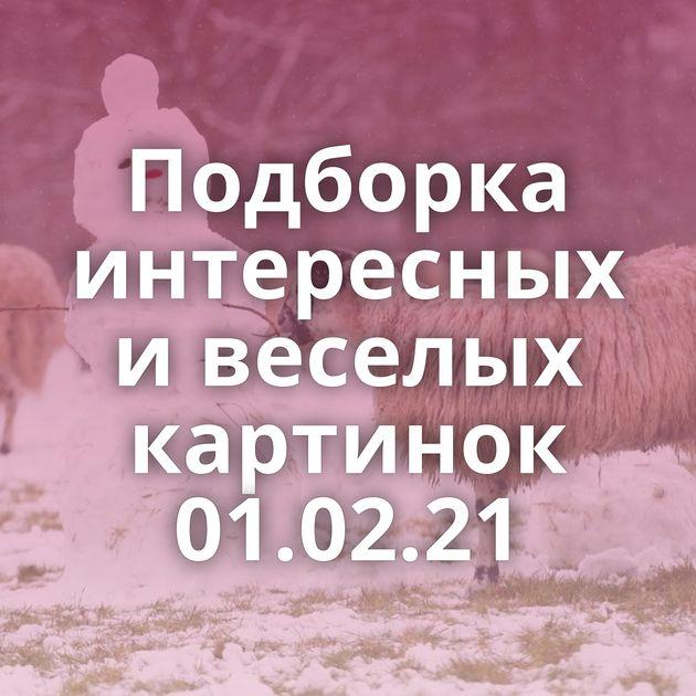 Подборка интересных и веселых картинок 01.02.21